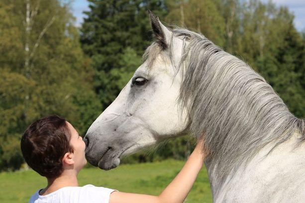Emilia oli heppatyttö. Perheessä oli oma poni, Aramara Hurrigane, jota tuttavallisesti Hurriksi kutsuttiin.