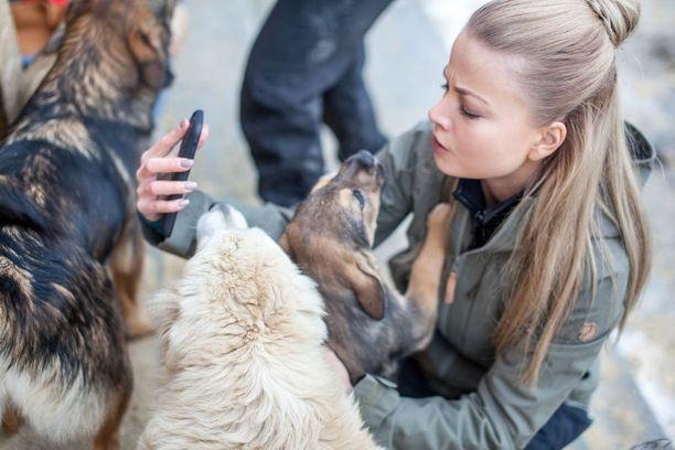 Janni Hussi edellisellä reissulla tutustumassa romanialaisen koiratarhan arkeen ja asukkaisiin.