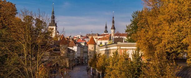 Tallinna on ihastuttava kohde syksylläkin.