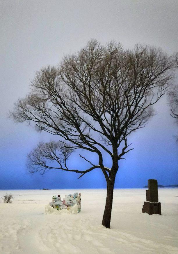 Lapanen paljasti kohdan, jossa vain muutaman sentin paksuinen jää oli pettänyt hiihtoretkellä olleen nuorukaisen alta Melkin saaren lähistöllä. Kuva on otettu tänä talvena Lauttasaaren Kasinonrannasta.