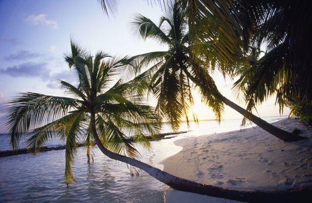 Malediivien atolleilta löytyy ihania rantoja.