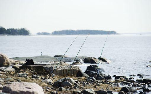 Korona synnytti kalastusbuumin, jonka uskotaan jatkuvan tänäkin vuonna
