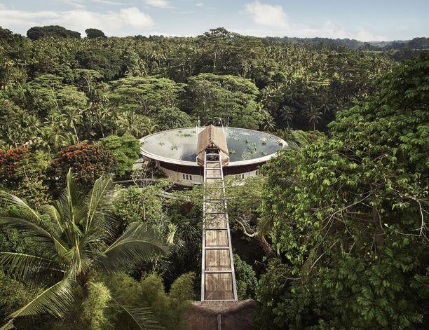 Kehutussa balilaishotellissa pääsee nauttimaan rauhasta ja luksuksesta. Four Seasons Resort Sayanissa on 60 huonetta.