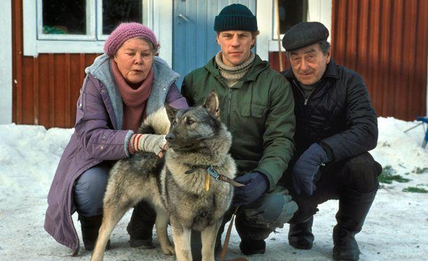Annikki, Erkki ja Antti Metsola ovat suomalaisten rakastamia tv-hahmoja.