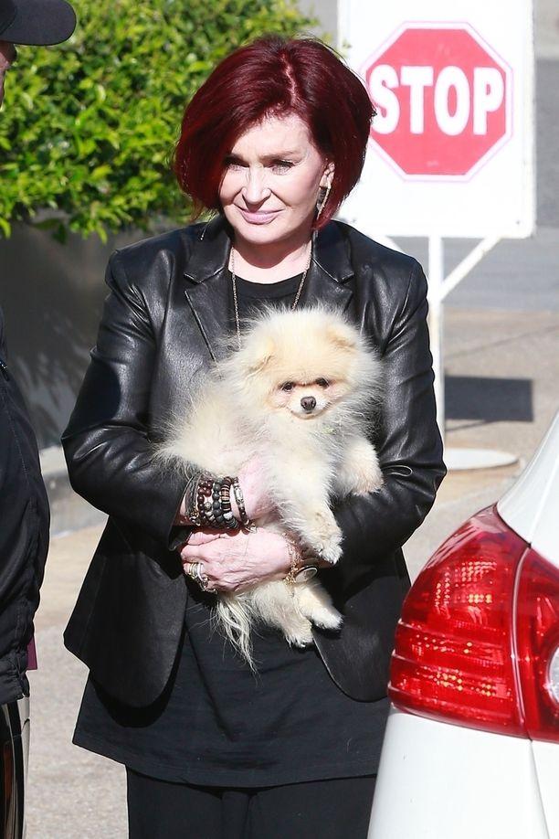 Sharon Osbourne on innokas koiraharrastaja.