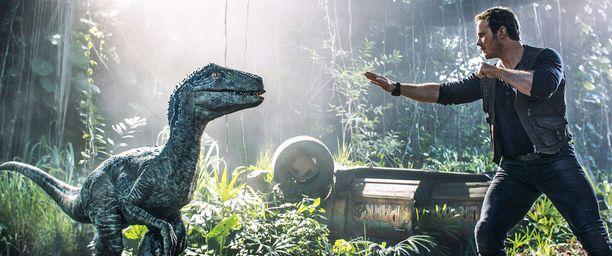Owen (Chris Pratt) ja Velociraptor Jurassic World: Kaatunut valtakunta -elokuvassa vuonna 2018.