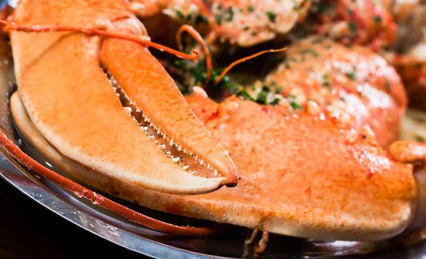 Hummeri on ökyannosten suosittu raaka-aine.