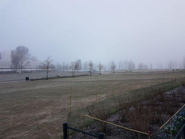 Helsingissä kylmä yö aiheutti aamuksi vankan sumun.