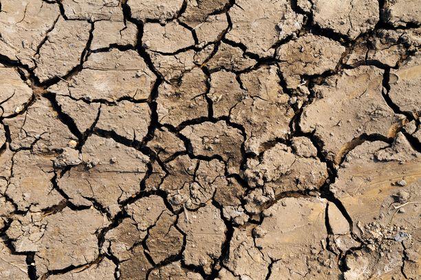Kuivuudesta halkeillut autiomaa Malawissa 2016. Kuivuus on sääilmiö El Ninon aikaansaamaa.