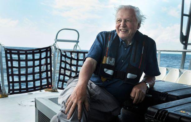 David Attenborough toimii katsojien oppaana.