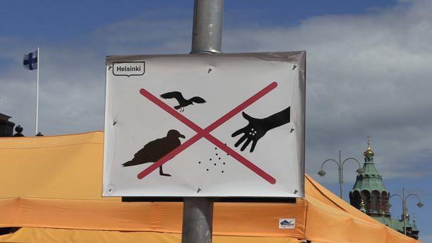 Sääntö numero yksi: älä syötä lintuja.