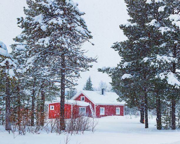 Laiskan ruohonleikkaajan kohtaloksi voi koitua lumihome. Kuvituskuva.