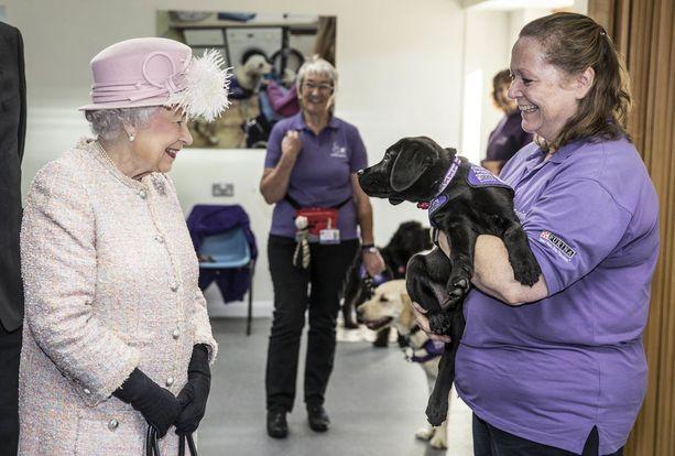 Kuningatar on tunnetusti koiraihmisiä.
