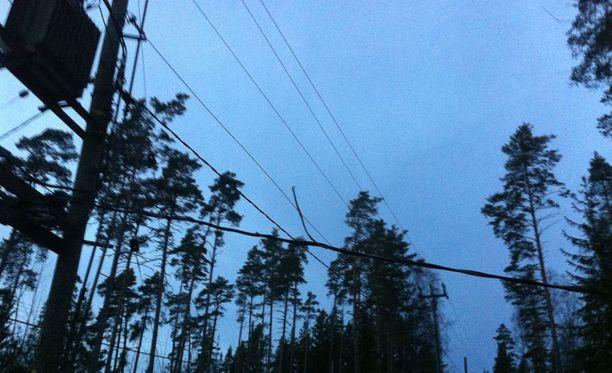 Jan Åbergin taloudessa sähköt ovat poikki kuudetta päivää. Linjan päällä rötköttää puu.