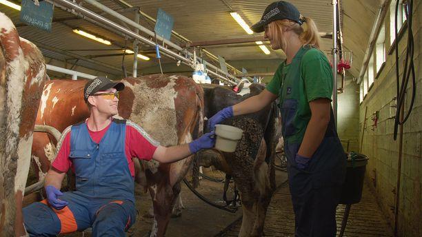 Marjo on lähtenyt ennakkoluulottomasti mukaan maatilan töihin ja myös hänen tyttärensä viihtyy navetassa.