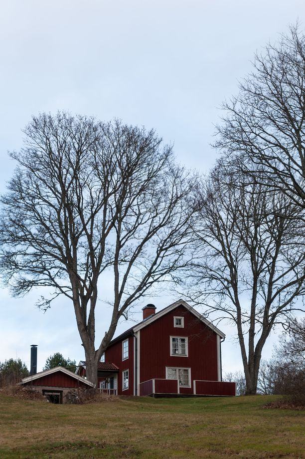 Katon tarkistustarvetahti riippuu myös siitä, miten paljon ympärillä on puita.