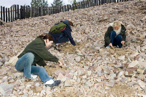 Lampivaaran kaivokselta voi etsiä matkamuistoksi oman ametistin.
