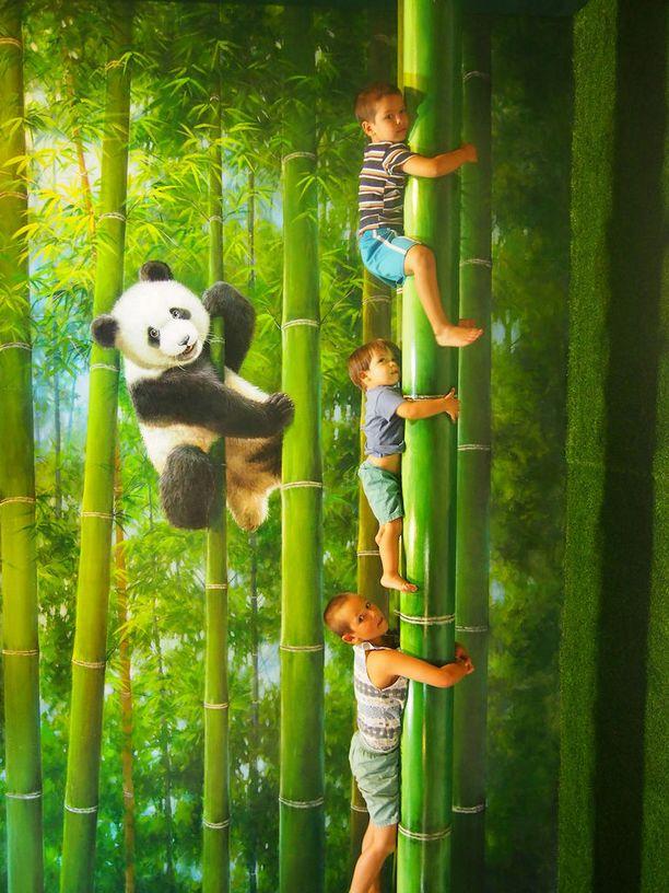 Chiang Maissa kannattaa tutustua maailman ensimmäiseen illuusiotaidemuseoon.
