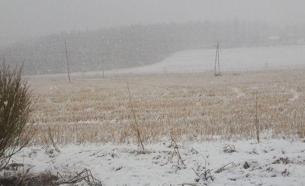 Näin talviselta näytti Ruovedellä tänä aamuna.
