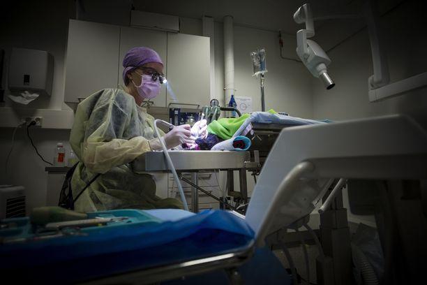 Eläinklinikan työntekijät poistuivat omatoimisesti klinikalta ja soittivat hätänumeroon. Kuvituskuva.
