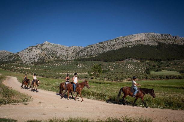 Osa Cortijo Los Lobosin hevosista on pelastettu huonoista oloista.