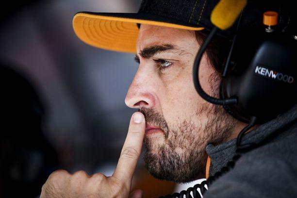 Fernando Alonso on mediatietojen mukaan tekemässä paluuta kuninkuusluokkaan.