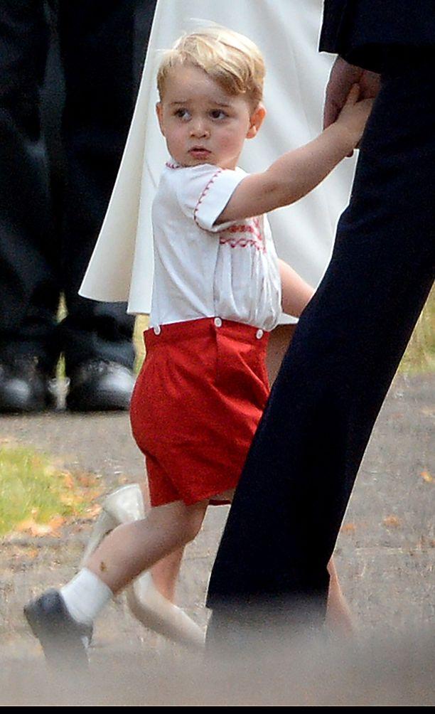 Parivuotiasta prinssiä vahditaan kameroiden kanssa leikkipuistoissakin.