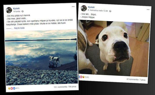 Sekarotuinen Hilppa-narttu jäi kaipaamaan ystäväänsä Kyöstiä. Hilpalla on nyt omat Facebook-sivut.