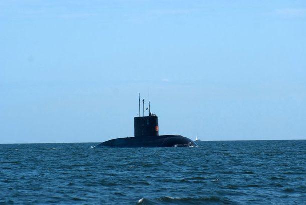Tämä venäläinen sukellusvene bongattiin Suomenlahdella vuonna 2009.