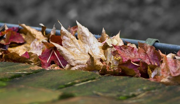 Tarkastuksen yhteydessä roskat ja lehdet harjataan pois, tyhjennetään ja poistetaan mahdolliset sammaleet.