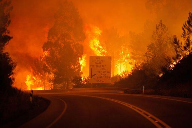 Useiden metrien korkeuteen nousevat liekit muodostivat valtavan tuliseinämän.