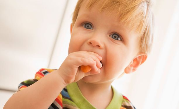 Lapsiperheitä halutaan kannustaa syömään runsaasti kasviksia.