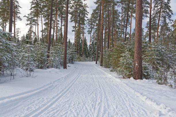 Hiihtäminenkin onnistuu mainiosti Virossa.