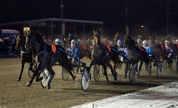 Mies oli jäädä hevosten jalkoihin Ruotsissa. Kuvan hevoset eivät liity uutiseen.