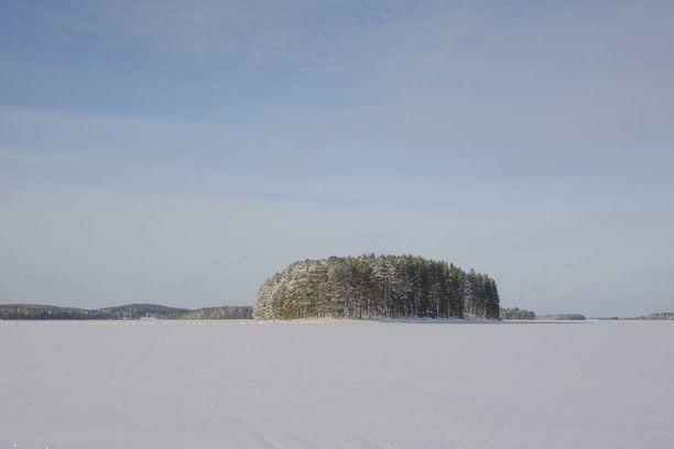 Lammasjärven metsät näyttävät kaukaa kuvattuna tältä.