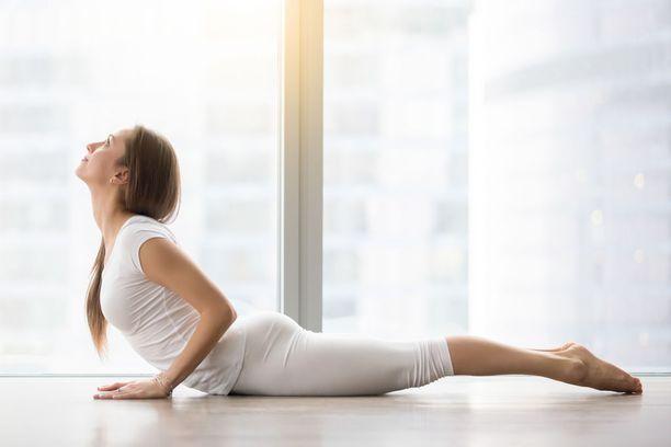 Säännöllinen liikunta vahvistaa kehon omia kivunsäätelyjärjestelmiä, parantaa selän toimintakykyä ja vähentää selkäkipua.
