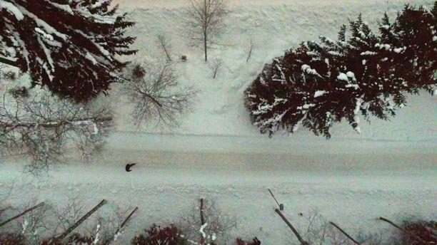 Ilmakuvassa näkyy Tesoman murhapaikka. Kuva ruutukaappaus Aamulehden videolta.