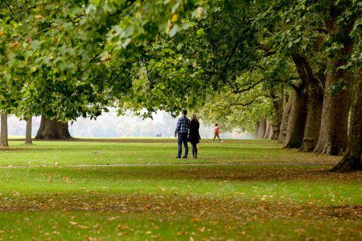 Lontoon Hyde Parkin puut ovat pikku hiljaa vaihtamassa väriään.
