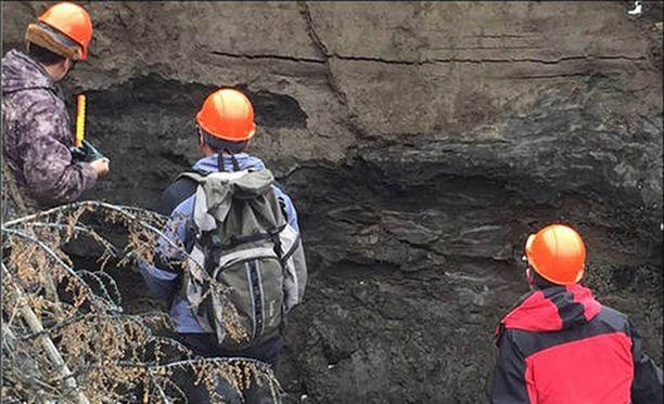 Kraatterin seinämät tarjoavat tutkijoille kymmenien tuhansien vuosien ekologisen aikajanan.
