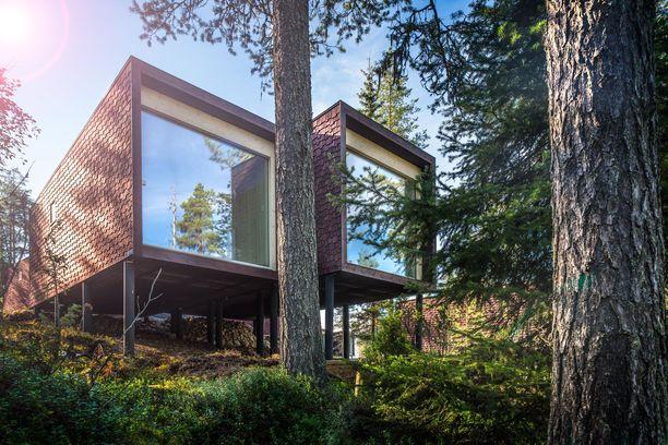 Käpylehmien inspiroimat hotellihuoneet ovat keränneet huomiota maailman arkkitehtuurijulkaisuissa.