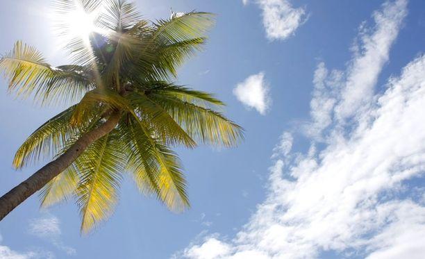 Varsinkin trooppisissa maissa reissaava altistuu monentyyppisille matoinfektioille.