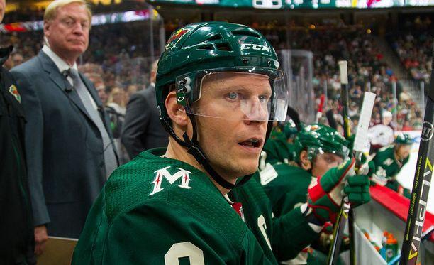 Minne Sota Wildin kapteeni Mikko KOivu iski maalin harjoitusottelussa Dallas Starsia vastaan.