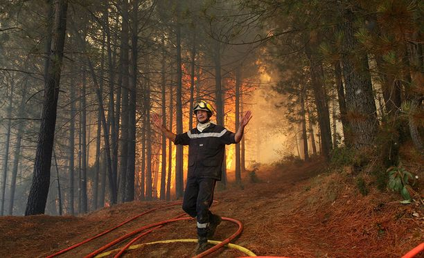 Ranskan Korsikalla saaren asukkaita on evakuoitu kodeistaan saarella riehuvien metsäpalojen takia. Kuvituskuva Korsikan vuoden 2009 metsäpaloista.