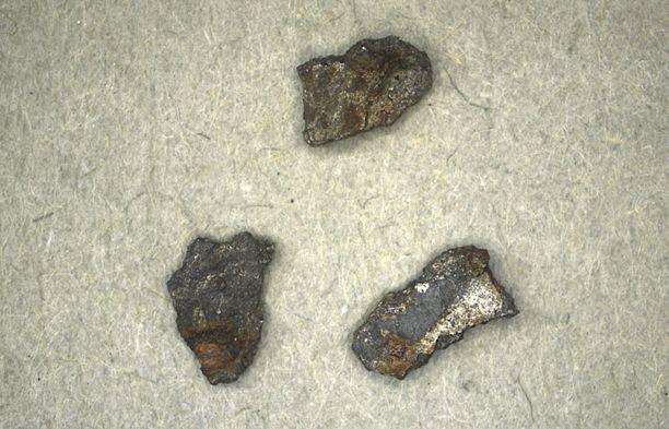 Tältä ruotsalaismetsästä löytyneet, noin kolmen millimetrin kokoiset meteoriitinsirpaleet näyttävät.