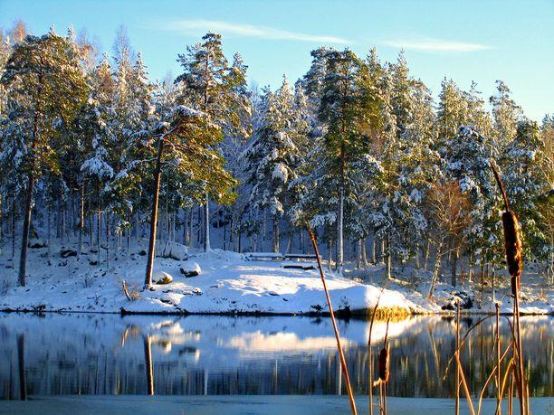 Pohjois-Lapissa saadaan nauttia lumipeitteestä ainakin muutaman päivän ajan. Kuvituskuva.