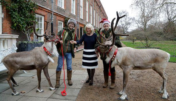 Perinteistä lasten joulutapahtumaa vietetään Clarence Housessa joka vuosi.