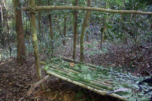 Bambusta askarreltu sänky lehtipehmikkeineen on yllättävän mukava. Se on kuitenkin tärkeä pitää irti maasta. Jutussa mainittu kuningaskobra löytyi kuvan sängyn alta.