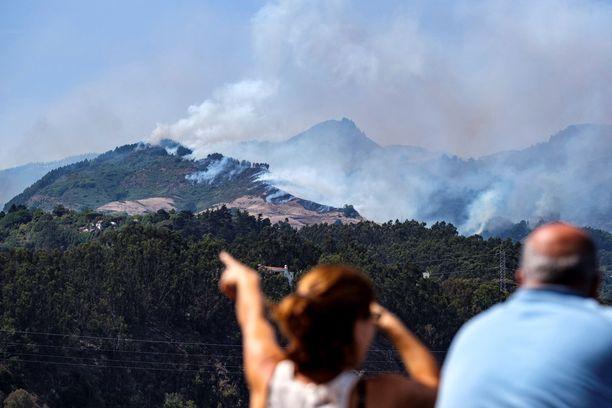 Gran Canarialla on kuivaa ja kuumaa. Olosuhteet ovat otolliset palojen leviämiselle.